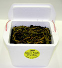 100 Green Night Crawlers packed in a foam container in dirt.