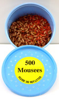 500 Mousees Packed in plastic container.